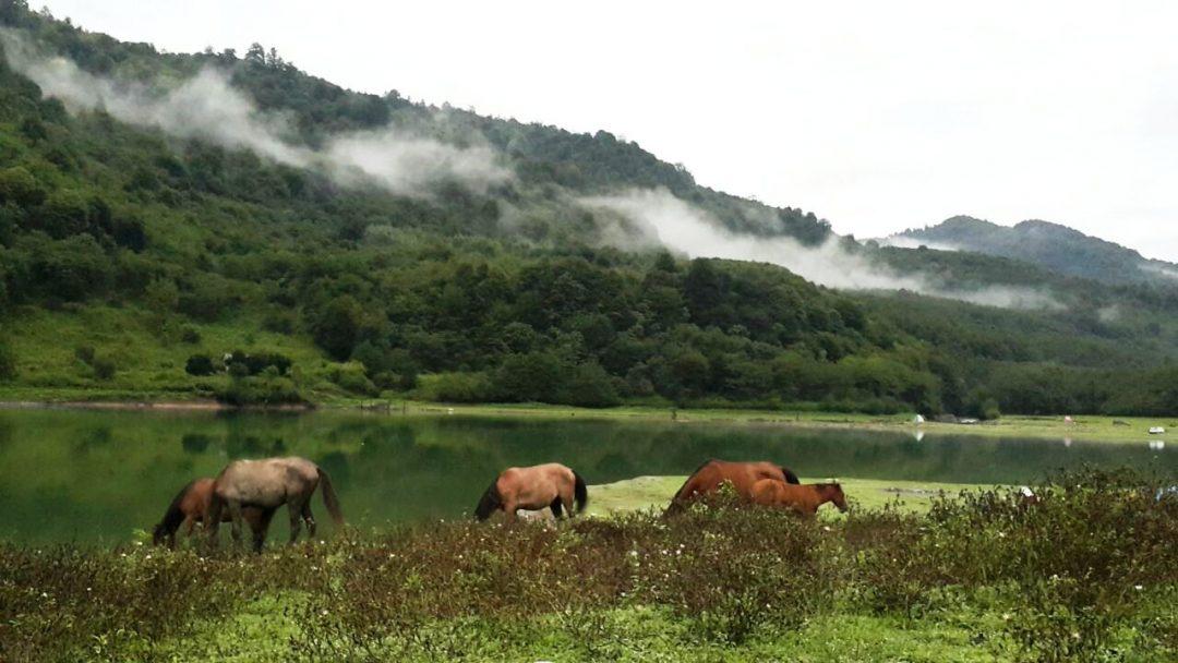 زیباترین دریاچه های ایران که باید قبل از مرگ دید(۱)