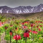 زیباترین جاذبه های گردشگری خرم آباد(۲)