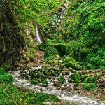 آبشار سرخ کمر