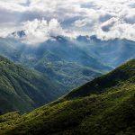 جنگل های زیبای ایران کدامند؟(۲)