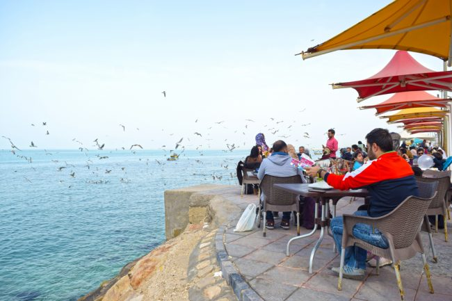 ساحل بوشهر