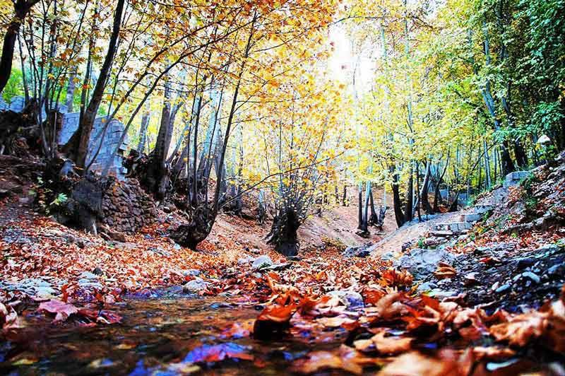 رودخانه قلات شیراز