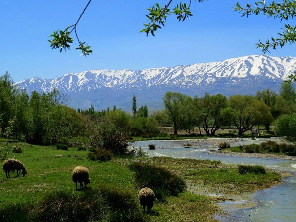 روستای فیازمان نهاوند