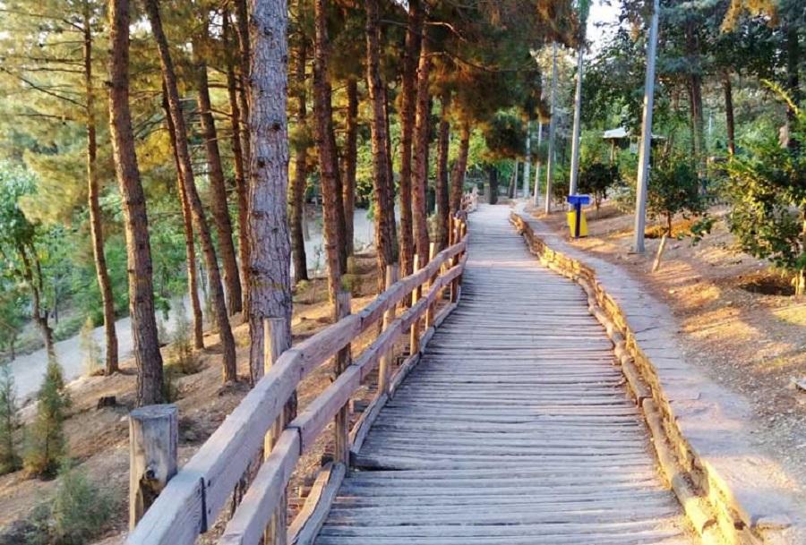 پارک جنگلی طالقانی