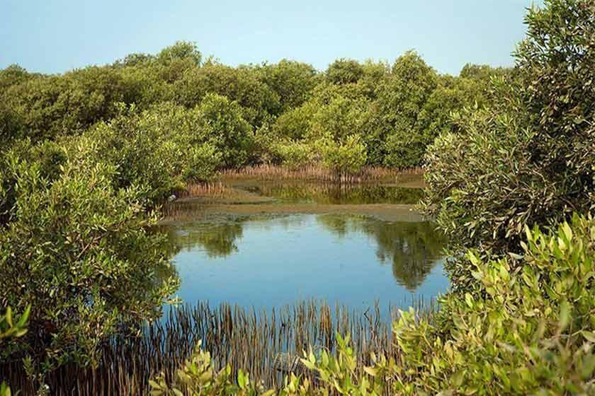 پارک ملی نایبند