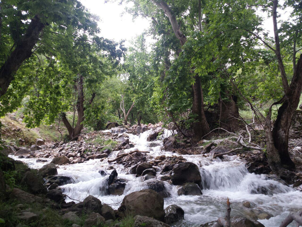 روستای گنجه