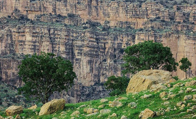 طبیعت اطراف تنگه کوهدشت