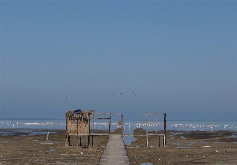 دریای گلوگاه