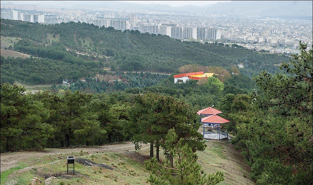 لویزان تهران