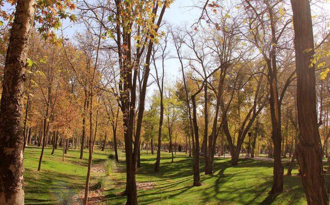 پارک ملت در مشهد