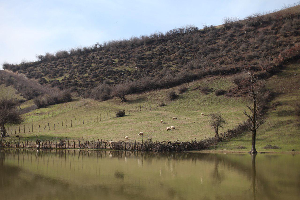 استخر روستای استخرگاه