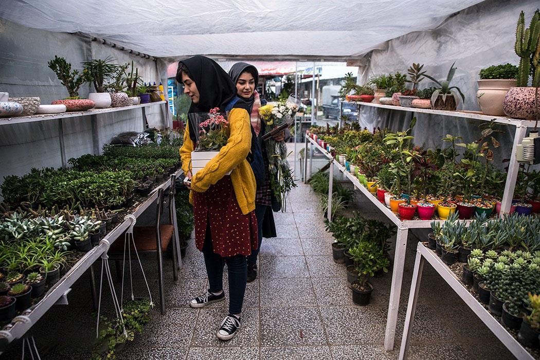 بازار گل محلاتی