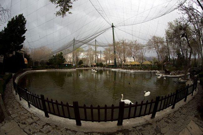 باغ پرندگان