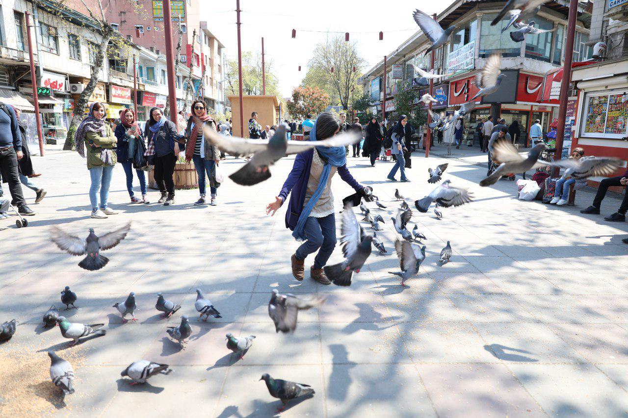 خیابان علم الهدی