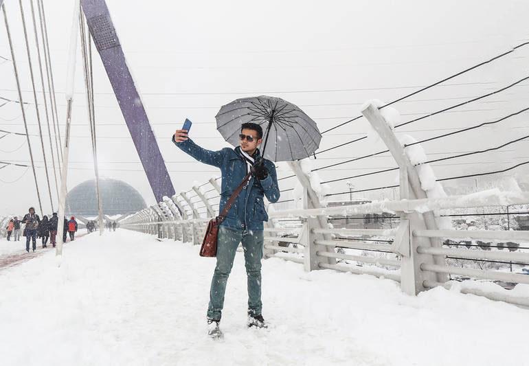 پل طبیعت در زمستان