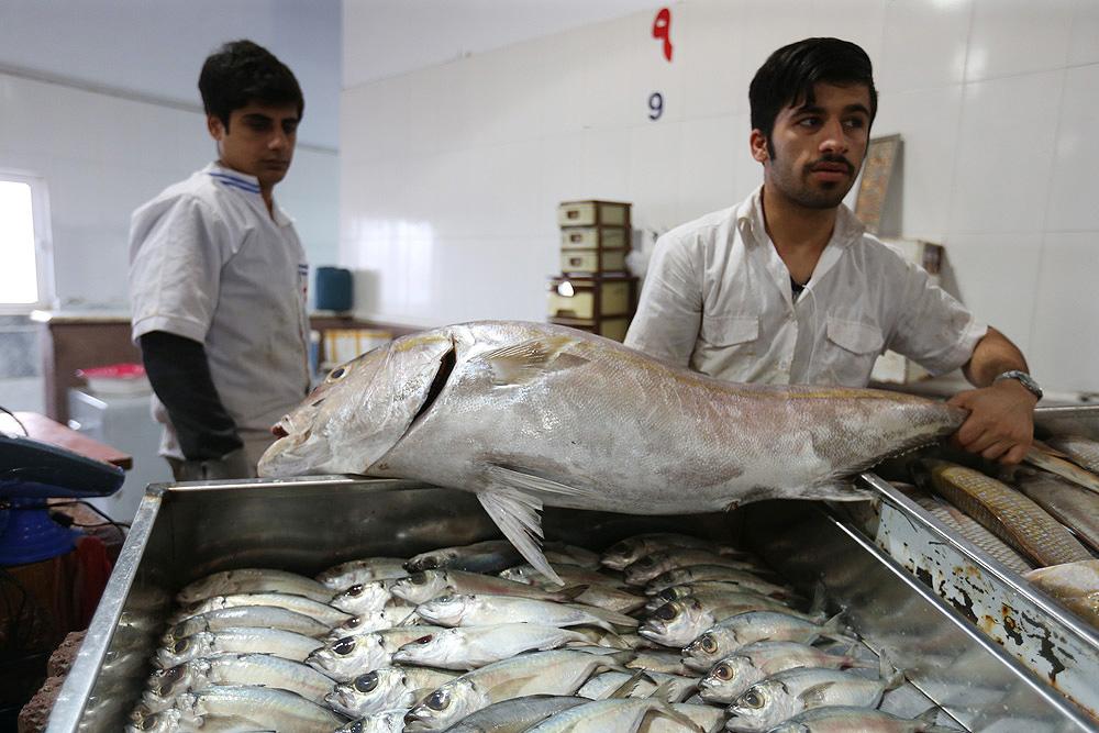 بازار ماهی فروشان کیش