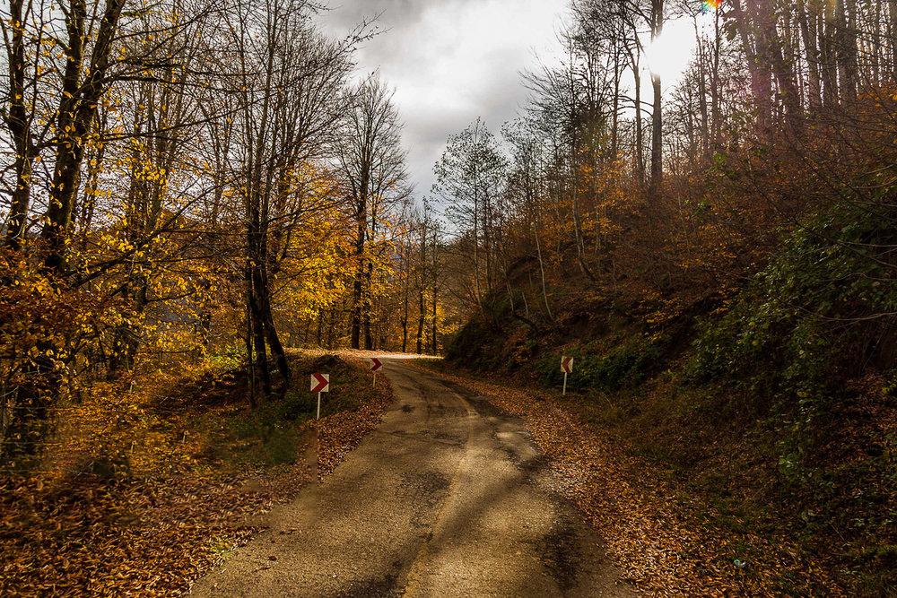 مسیر دسترسی به هلودشت
