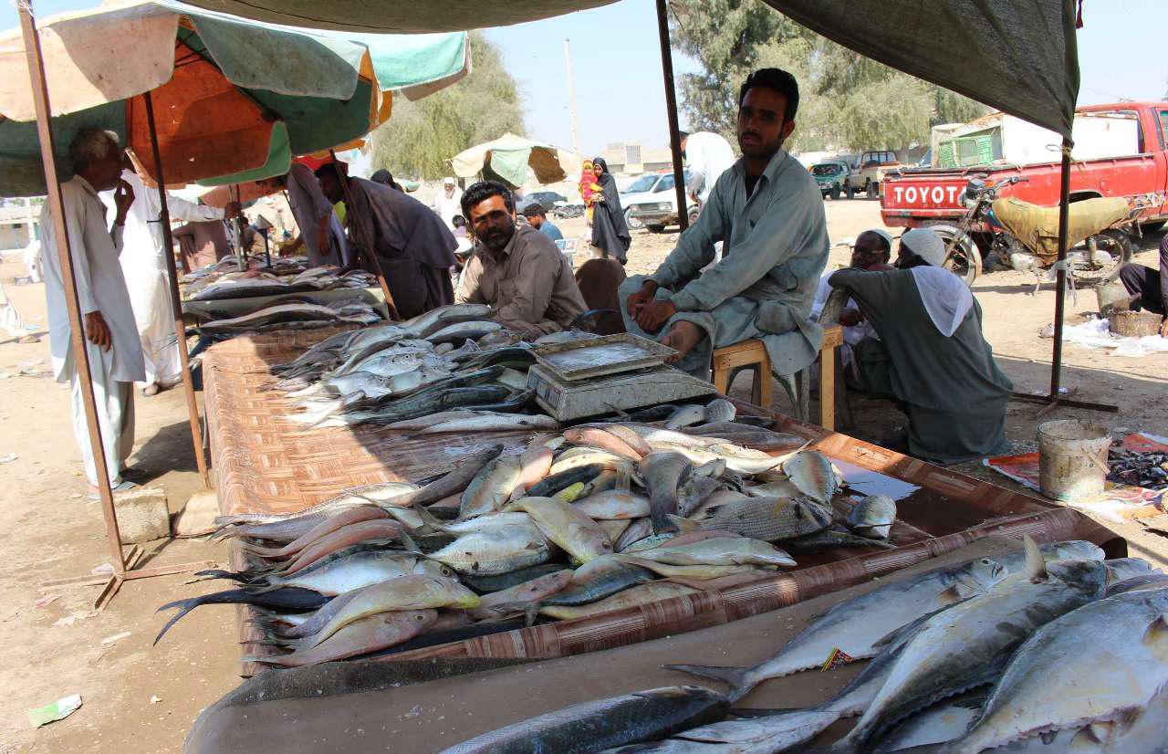 بازار ماهی چابهار