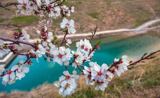 جاهای دیدنی ایران در بهار