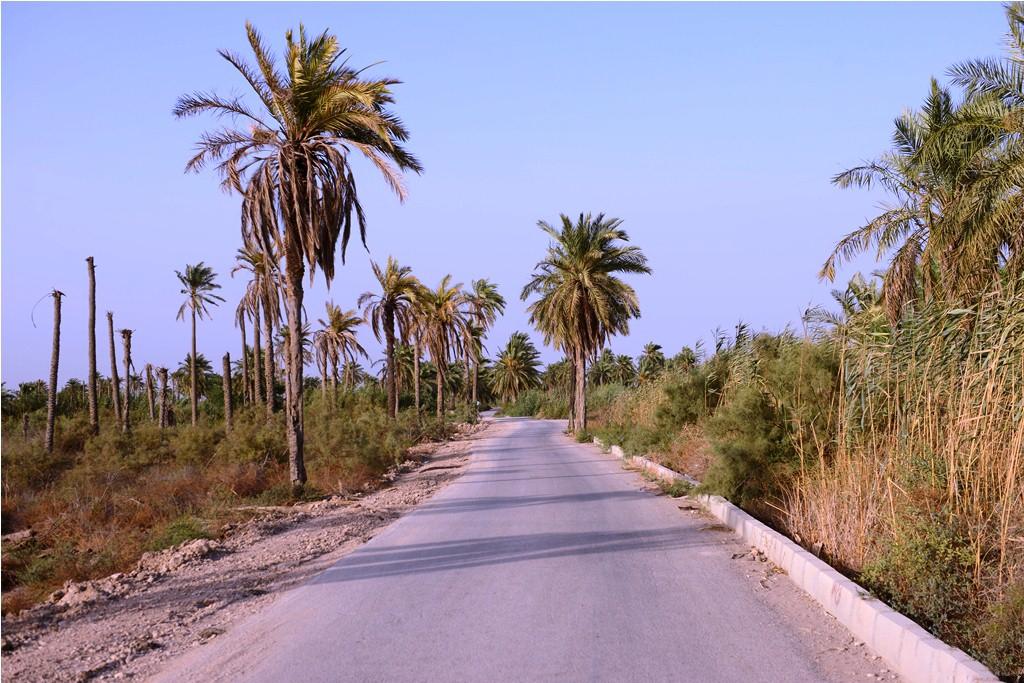 جزیره مینو آبادان