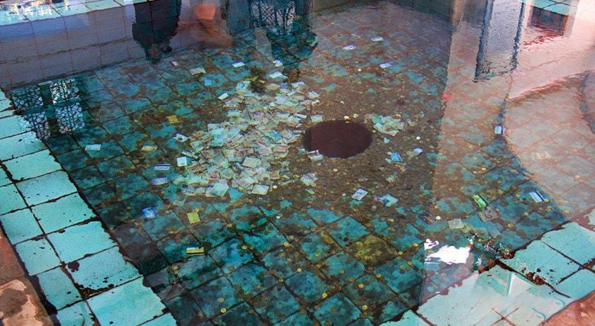 سکه های حوض باغ فین
