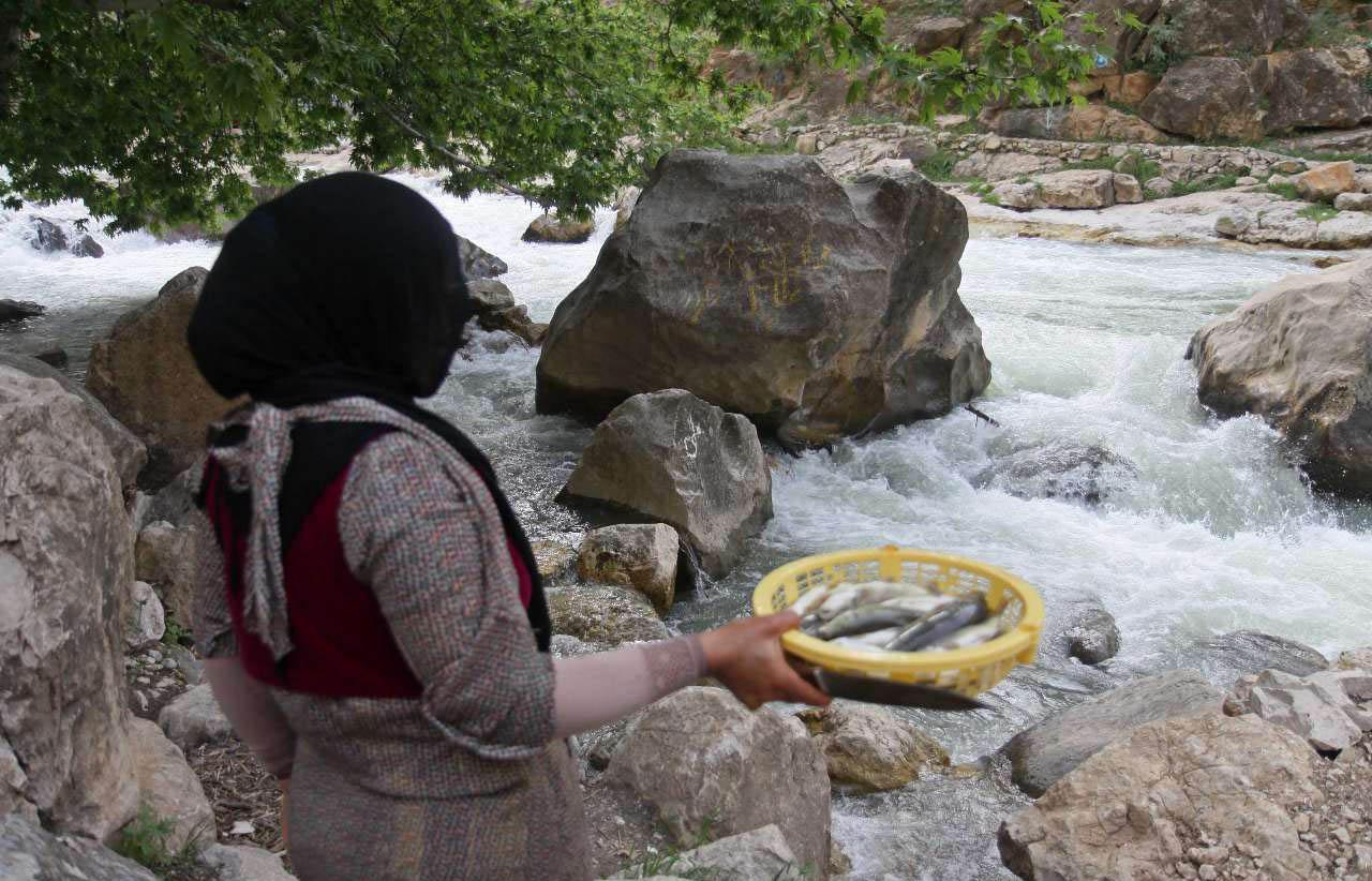ماهیگیری در رودخانه سیروان