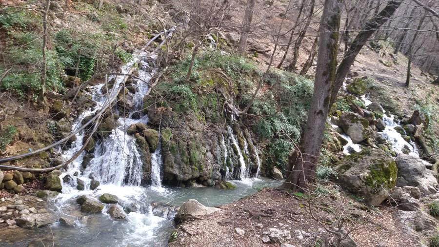 چشمه زاو