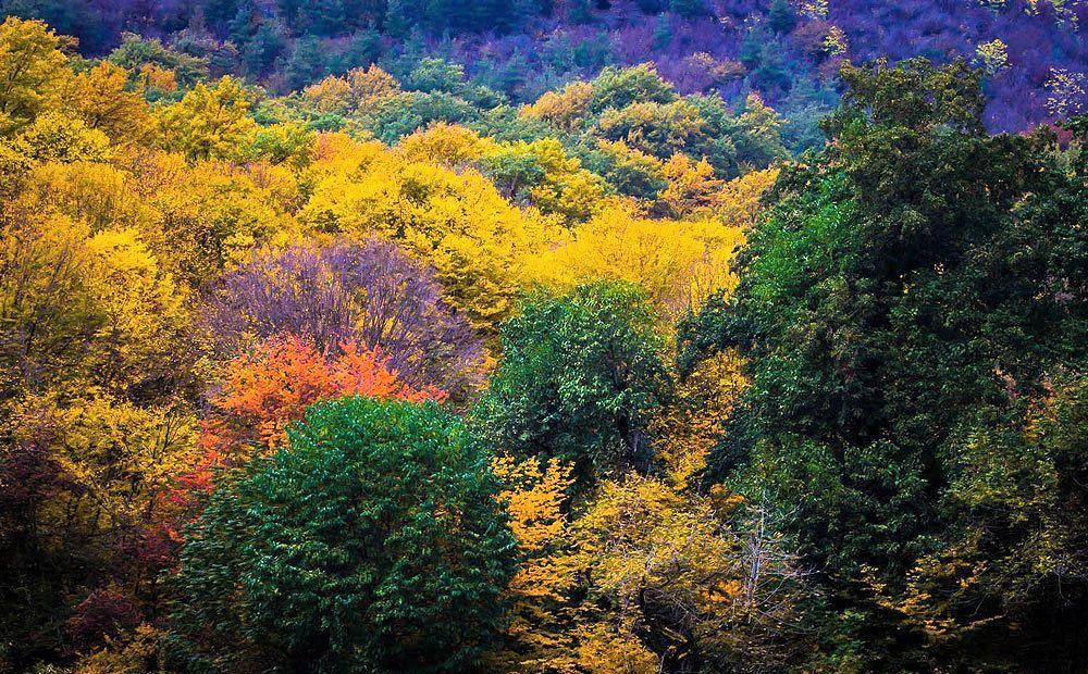 Gorgan in fall
