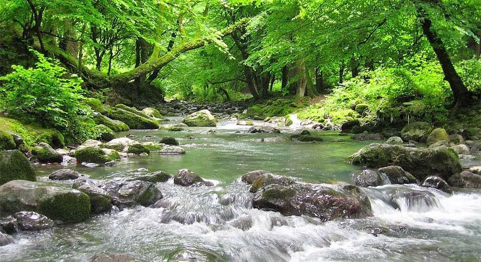 River in Gorgan's Naharkhoran